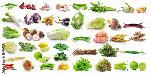 Recess Fitting Vegetables set of vegetable isolated on white background