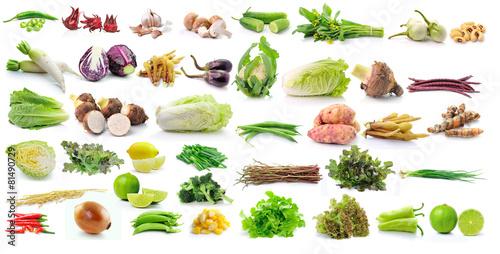 Foto op Plexiglas Groenten set of vegetable isolated on white background