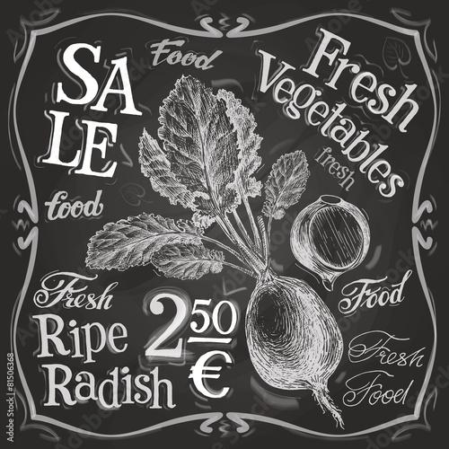 radish vector logo design template. fresh food, vegetables or