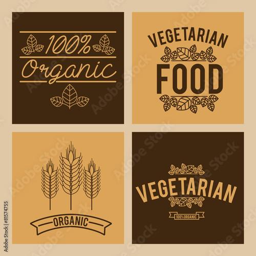 Fototapety, obrazy: Organic food design