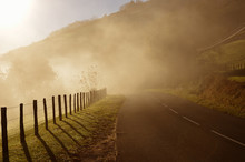 Mountain Road In The Fog