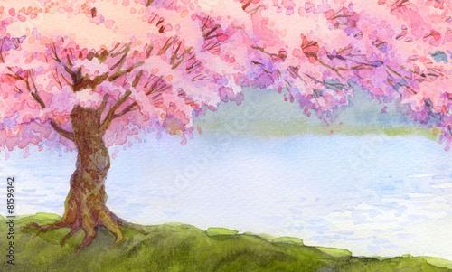kwitnace-rozowe-drzewo-nad-jeziorem