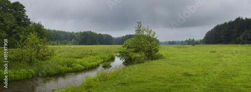 Printed kitchen splashbacks River Green meadow in summer day