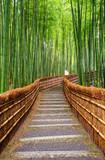 Fototapeta Przestrzenne - Path to bamboo forest, Arashiyama, Kyoto, Japan