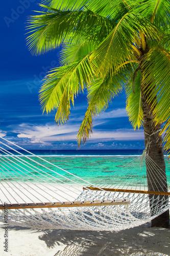 pusty-hamak-miedzy-drzewkami-palmowymi-na-tropikalnej-plazy-rarotonga