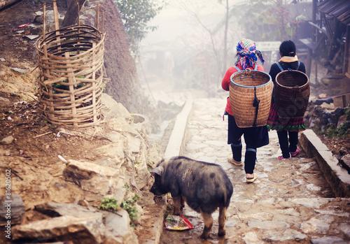 Fotografie, Obraz  Hmong ženy jsou na cestě z jejich vesnice Sapa, Vietnam.