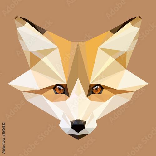 Fotografía  Bajo vector de zorro poli