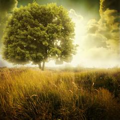 Panel Szklany Podświetlane Inspiracje na jesień landscape