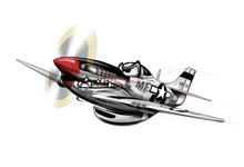 P-51 Mustang WWII Airplane Car...
