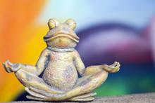 Stone Frog Who Meditates