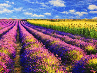 Panel Szklany Lawenda Lavender and sunflowers field.