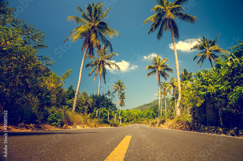 Foto  Nice asfalt road with palm trees