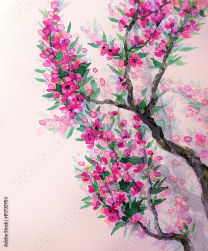 tlo-wiosna-akwarela-magenta-kwiaty-na-galezi-drzewa