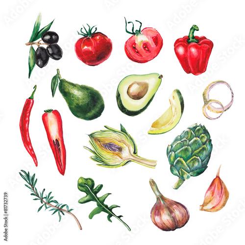 Photo  watercolor big vegetables set