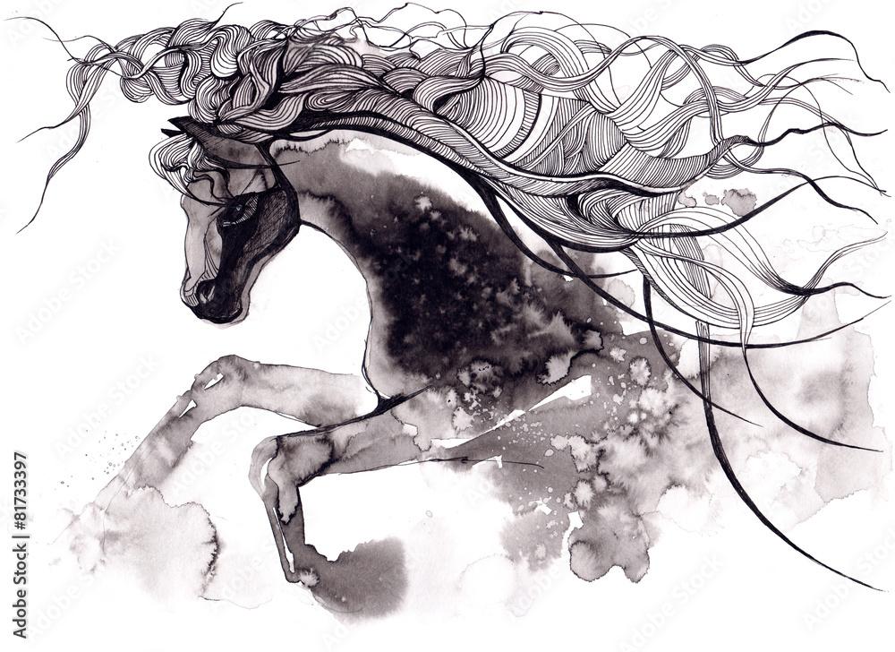 Fototapety, obrazy: horse