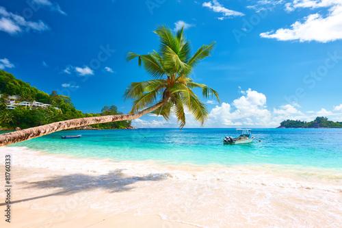 Fototapeta Beautiful Anse Intendance beach at Seychelles obraz na płótnie