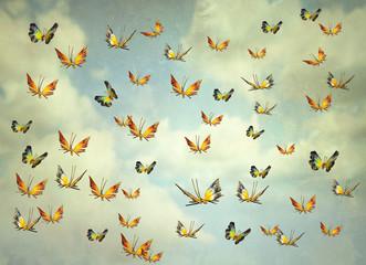 Fototapeta Butterflies in the sky