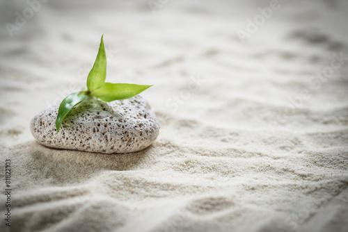 Cadres-photo bureau Zen pierres a sable zen stones