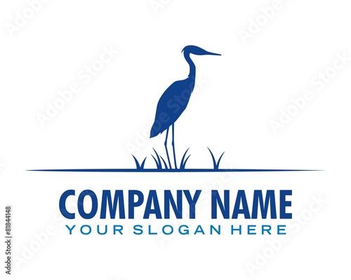 Fotografia stars logo image vector