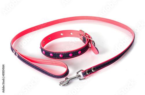 Stampa su Tela leash and collar