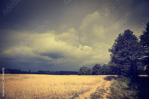 Fotografie, Obraz  Dark Toned Landscape with Field and Moody Sky