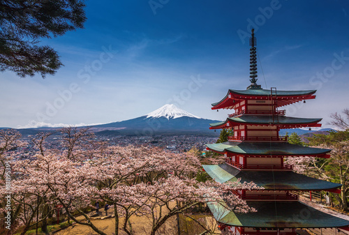 Canvas Prints Japan Chureito Pagoda with sakura & Beautiful Mt.fuji View