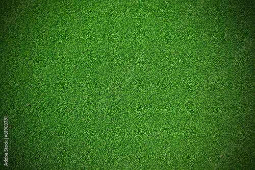 Artificial green Grass Canvas Print