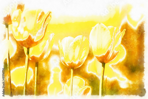 watercolor akvarel paint effect of spring yellow tulips Poster