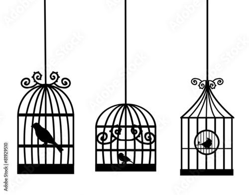Foto op Canvas Vogels in kooien birdcage