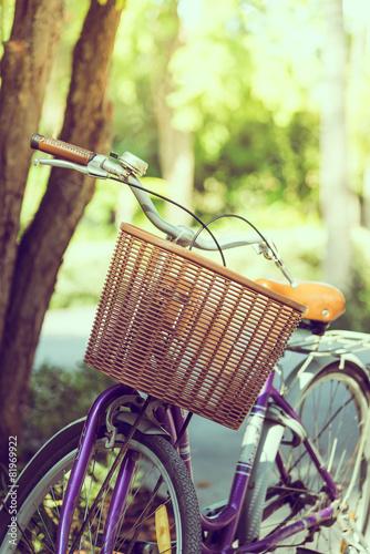 Vintage bicycle - 81969922