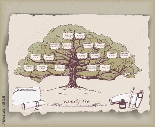 Fotografie, Obraz  Hand-drawn family tree with decorative elements. Vector