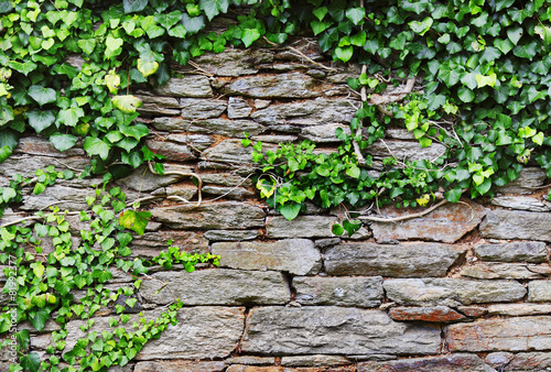 fototapeta na drzwi i meble Steinmauer