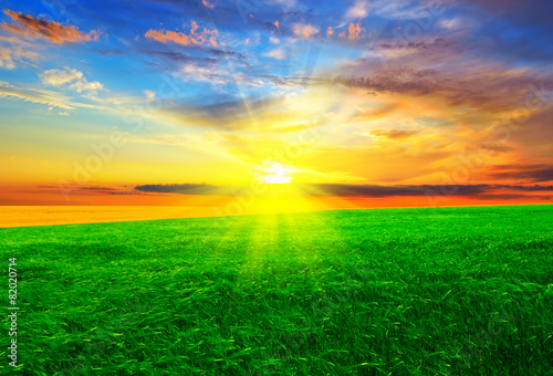 Foto op Aluminium Groene Beautiful sunset