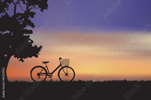 Canvas Prints Cycling The bike with sunset on the meadow