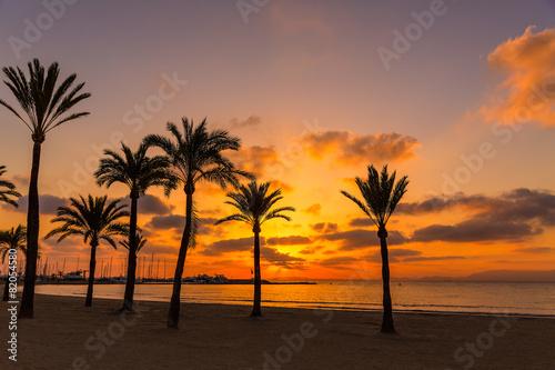 Fototapety, obrazy: Majorca El Arenal sArenal beach sunset near Palma