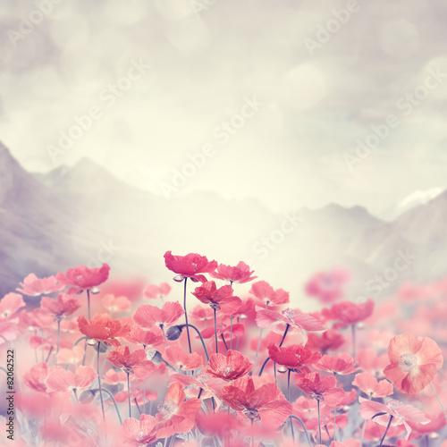 Tuinposter Bloemen Poppy Flowers