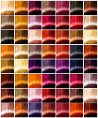 Hair colors palette. Tints. Dyed hair color sample