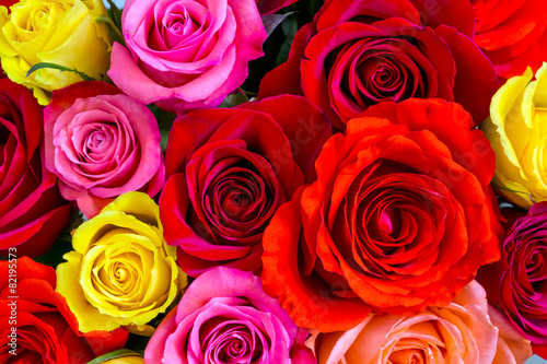 Tuinposter Roses Roses background