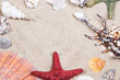 Sea shells and starfishes over sand background