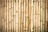 Fototapeta Bambus - grunge yellow bamboo background and texture