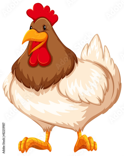 Wall Murals Ranch Chicken