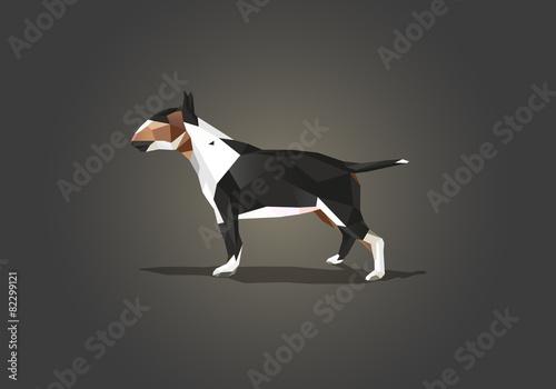 Carta da parati English Bull Terrier