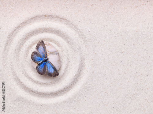 Tuinposter Stenen in het Zand A blue vivid butterfly on a zen stone with circle patterns in th