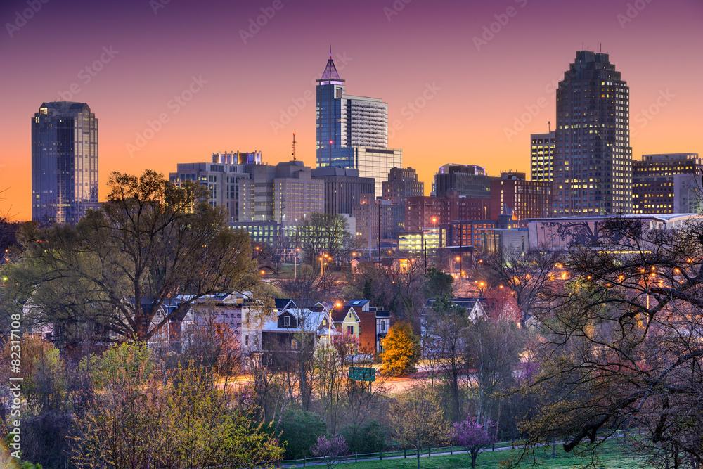 Fototapety, obrazy: Raleigh, North Carolina, USA Skyline