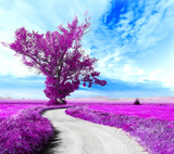 Surrealistyczny krajobraz Drzewo i droga między polami - 82325913