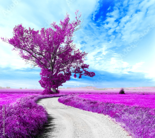 Paisaje surrealista. Arbol y camino entre los campos #82325913