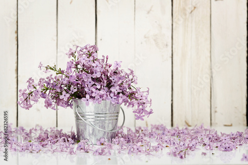 Photo sur Toile Lilac lilac flowers