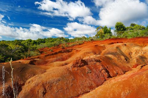 Foto op Canvas Baksteen Famous red dirt of Waimea Canyon in Kauai