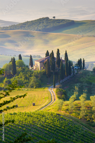 Tuinposter Wijngaard Tuscany, landscape and farmhouse in the hills of Val d'Orcia