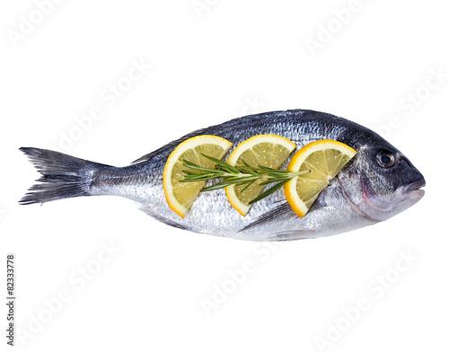 Fotografie, Obraz  Dorado fish isolated on white background.